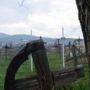 Temető - Nagypatak (Moldva)