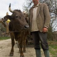 Szekeres - Csík (Moldva)