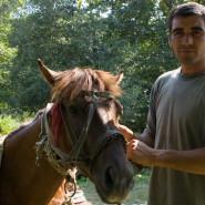 Ló és gazdája - Külsőrekecsin (Moldva)